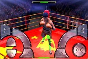 international-boxing-champions-8